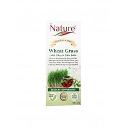Dr. Nature sok Wheat Grass,...